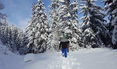 Bourg-St-Pierre, snowshoe trail Le Guide