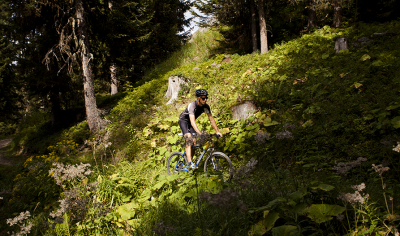 Mountain bike, Alpage de la Fouly