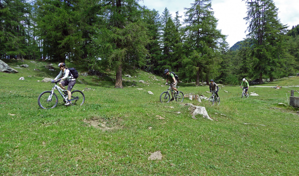 Mountain bike / Ebike Col des Planches, parcours n°778